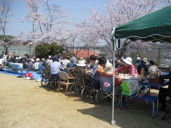 H23.4.10お花見⑤.JPG